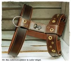 Hundegeschirr aus Leder - Thors Hammer
