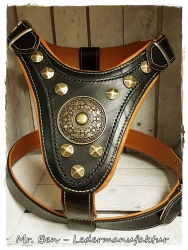 leather dog harness - gladiator 2